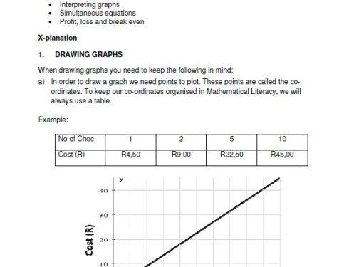 Grade 11 Maths Literacy Support